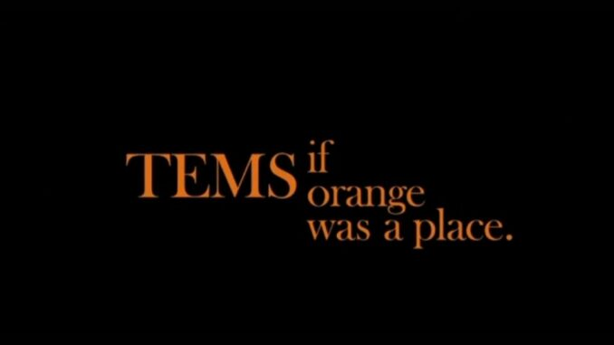 Tems - If Orange Was a Place Ep